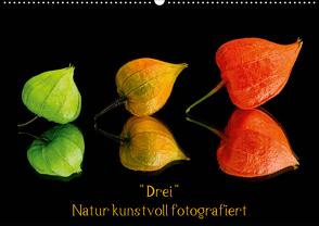 """""""Drei"""" Natur kunstvoll fotografiert (Wandkalender 2021 DIN A2 quer) von Goerz,  Beate"""