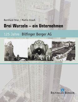 Drei Wurzeln – ein Unternehmen von Krauss,  Martin, Stier,  Bernhard