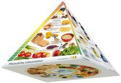 Dreidimensionale DGE-Lebensmittelpyramide von Deutsche Gesellschaft für Ernährung (DGE)