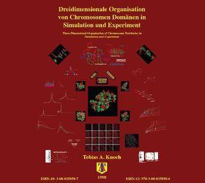 Dreidimensionale Organisation von Chromosomen-Domänen in Simulation und Experiment von Knoch,  Tobias Aurelius