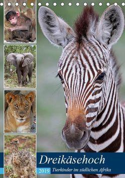 Dreikäsehoch – Tierkinder im südlichen Afrika (Tischkalender 2019 DIN A5 hoch) von Woyke,  Wibke