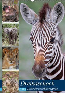 Dreikäsehoch – Tierkinder im südlichen Afrika (Wandkalender 2019 DIN A2 hoch) von Woyke,  Wibke