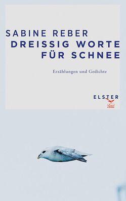 Dreißig Worte für Schnee von Grünig,  Stöh, Reber,  Sabine