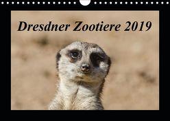 Dresdner Zootiere 2019 (Wandkalender 2019 DIN A4 quer) von Weirauch,  Michael