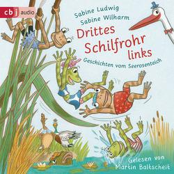 Drittes Schilfrohr links – Geschichten vom Seerosenteich von Baltscheit,  Martin, Ludwig,  Sabine