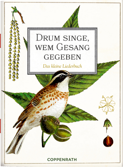 Drum singe, wem Gesang gegeben