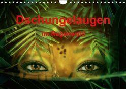 Dschungelaugen im Regenwald (Wandkalender 2019 DIN A4 quer) von Brunner-Klaus,  Liselotte