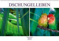 Dschungelleben – Tierportraits (Wandkalender 2019 DIN A2 quer) von Brunner-Klaus,  Liselotte