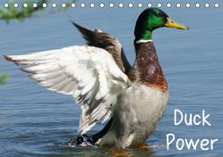 Duck Power (Tischkalender 2020 DIN A5 quer) von kattobello