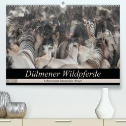 Dülmener Wildpferde – Lebensraum Meerfelder Bruch (Premium, hochwertiger DIN A2 Wandkalender 2021, Kunstdruck in Hochglanz) von Mielewczyk,  Barbara