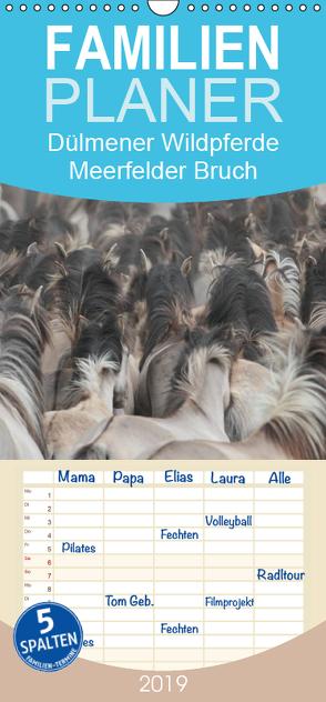 Dülmener Wildpferde – Meerfelder Bruch – Familienplaner hoch (Wandkalender 2019 , 21 cm x 45 cm, hoch) von Mielewczyk,  Barbara