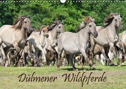 Dülmener Wildpferde (Wandkalender 2019 DIN A3 quer) von Menden,  Katho