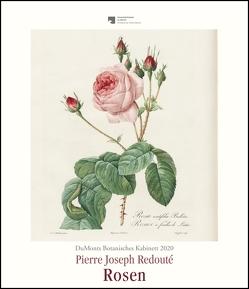 DuMonts Botanisches Kabinett – Rosen von P.J. Redouté – Kunstkalender 2020 – Wandkalender im Hochformat 34,5 x 40 cm von DUMONT Kalenderverlag, Redouté,  Pierre-Joseph