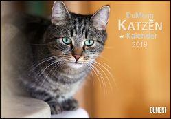 DuMonts Katzenkalender 2019 – Broschürenkalender – Wandkalender – mit Schulferienterminen – Format 42 x 29 cm von DUMONT Kalenderverlag, Jorjan,  Jette