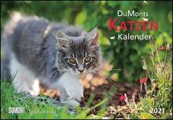 DUMONTS Katzenkalender 2021 – Broschürenkalender – Wandkalender – mit Schulferienterminen – Format 42 x 29 cm von Drewka,  Tatjana, Jorjan,  Jette