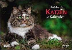 DUMONTS Katzenkalender 2022 – Broschürenkalender – Wandkalender – mit Schulferienterminen – Format 42 x 29 cm von Jorjan,  Jette