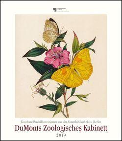 DuMonts Zoologisches Kabinett – Kunstkalender 2019 – Wandkalender im Hochformat 34,5 x 40 cm von DUMONT Kalenderverlag, Edward,  Donovan
