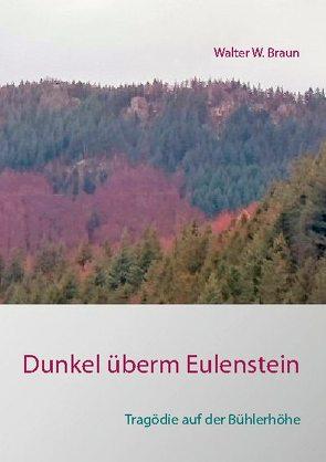 Dunkel überm Eulenstein von Braun,  Walter W.