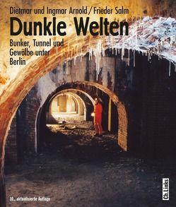 Dunkle Welten von Arnold,  Dietmar, Arnold,  Ingmar, Salm,  Frieder