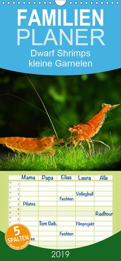 Dwarf Shrimps – kleine Garnelen – Familienplaner hoch (Wandkalender 2019 , 21 cm x 45 cm, hoch) von Pohlmann,  Rudolf