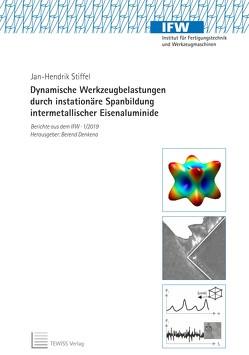 Dynamische Werkzeugbelastungen durch instationäre Spanbildung intermetallischer Eisenaluminide von Stiffel,  Jan-Hendrik