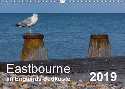 Eastbourne an Englands Südküste (Wandkalender 2019 DIN A3 quer) von Perner,  Stefanie