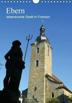 Ebern – lebenswerte Stadt in Franken (Wandkalender 2019 DIN A4 hoch) von Meister,  Andrea