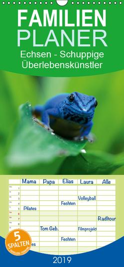 Echsen – Schuppige Überlebenskünstler – Familienplaner hoch (Wandkalender 2019 , 21 cm x 45 cm, hoch) von Rinke,  Andreas