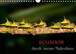 Ecuador durch meine Makrolinse (Wandkalender 2019 DIN A4 quer) von Schulz,  Eerika
