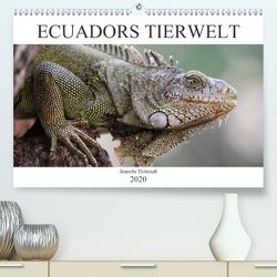 Ecuadors Tierwelt (Premium, hochwertiger DIN A2 Wandkalender 2020, Kunstdruck in Hochglanz) von Dobrindt,  Jeanette