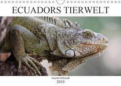 Ecuadors Tierwelt (Wandkalender 2019 DIN A4 quer) von Dobrindt,  Jeanette