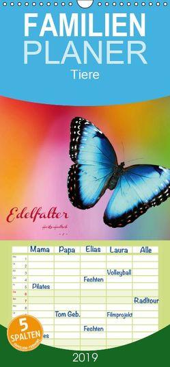 Edelfalter – 2 – – Familienplaner hoch (Wandkalender 2019 , 21 cm x 45 cm, hoch) von Hultsch,  Heike