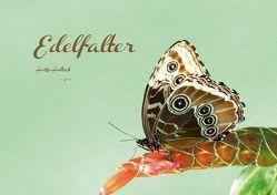 Edelfalter – 2 – (Posterbuch DIN A4 quer) von Hultsch,  Heike