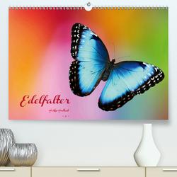 Edelfalter – 2 – (Premium, hochwertiger DIN A2 Wandkalender 2021, Kunstdruck in Hochglanz) von Hultsch,  Heike