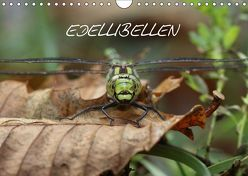 EDELLIBELLEN (Wandkalender 2018 DIN A4 quer) von Brix - Studio Brix,  Matthias