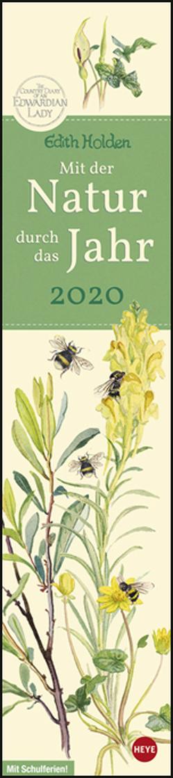 Edith Holden: Mit der Natur durchs Jahr Kalender 2020 von Heye, Holden,  Edith
