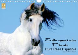 Edle spanische Pferde – Pura Raza Espanola (Wandkalender 2020 DIN A4 quer) von Dünisch - www.Ramona-Duenisch.de,  Ramona