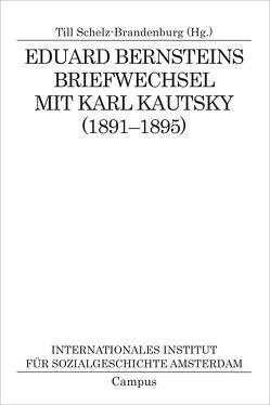 Eduard Bernsteins Briefwechsel mit Karl Kautsky (1891-1895) von Schelz-Brandenburg,  Till