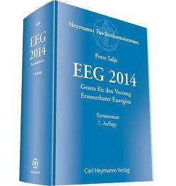 EEG 2014 von Salje,  Peter