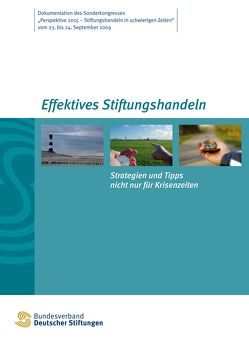 Effektives Stiftungshandeln. Strategien und Tipps nicht nur für Krisenzeiten