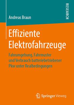 Effiziente Elektrofahrzeuge von Braun,  Andreas