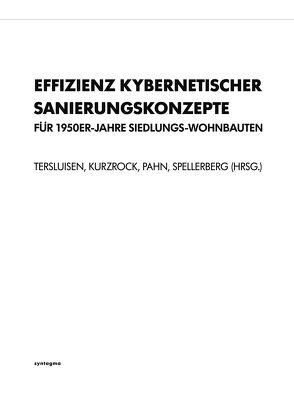 Effizienz kybernetischer Sanierungskonzepte für 50er-Jahre Siedlungs-Wohnbauten von Kurzrock, Pahn, Spellerberg, Technische Universität Kaiserslautern, Tersluisen