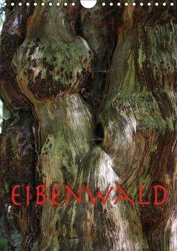 Eibenwald (Wandkalender 2018 DIN A4 hoch) von Reichenauer,  Maria