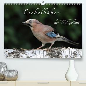 Eichelhäher der Waldpolizist (Premium, hochwertiger DIN A2 Wandkalender 2021, Kunstdruck in Hochglanz) von Konieczka,  Klaus