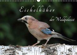 Eichelhäher der Waldpolizist (Wandkalender 2019 DIN A3 quer) von Konieczka,  Klaus