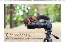Eichhörnchen – Hast du Nüsschen mache ich Männchen (Wandkalender 2018 DIN A2 quer) von Cerny,  Birgit