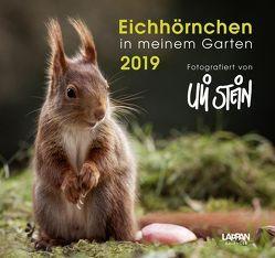 Eichhörnchen in meinem Garten 2019 von Stein,  Uli