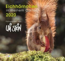 Eichhörnchen in meinem Garten 2020 von Stein,  Uli