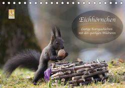 Eichhörnchen – Lustige Kurzgeschichten mit den quirligen Wildtieren (Tischkalender 2019 DIN A5 quer) von Cerny,  Birgit