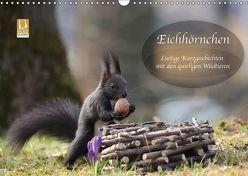 Eichhörnchen – Lustige Kurzgeschichten mit den quirligen Wildtieren (Wandkalender 2018 DIN A3 quer) von Cerny,  Birgit